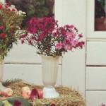 Коломна, Константиново и книжно-яблочный фестиваль